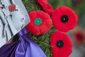 Thank-You-to-Our-Canadian-Veterans-on-Remembrance-Day